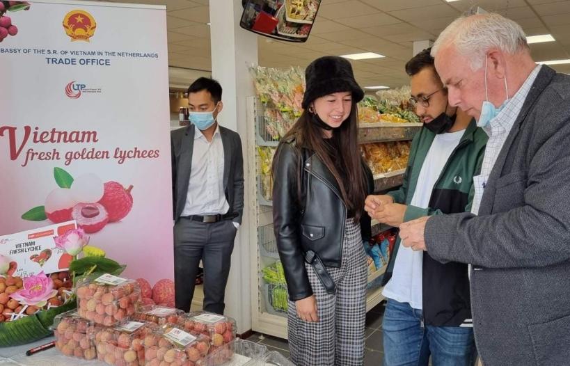 Lần đầu vải thiều Việt Nam nhập khẩu chính ngạch vào Hà Lan, 18 euro/kg