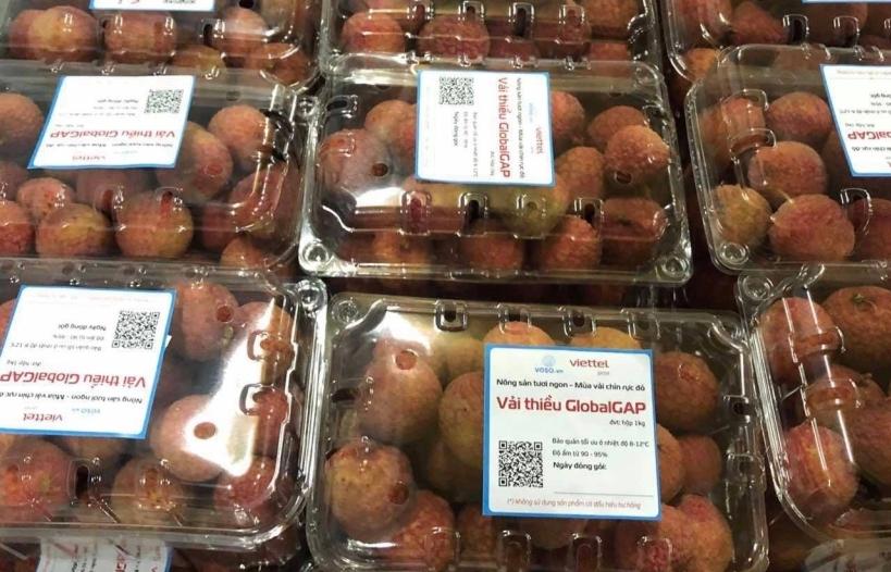 Nông sản lần đầu vào EU trên nền tảng thương mại điện tử do Việt Nam vận hành