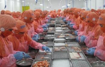 Hàng Việt có thực sự bứt phá vào thị trường CPTPP, EVFTA?