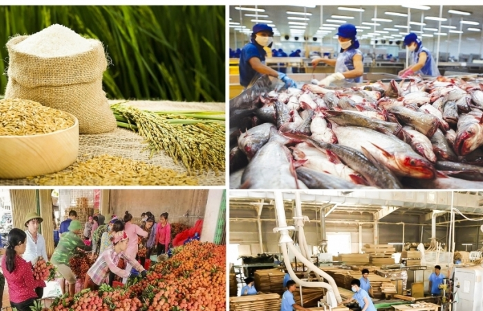 Nông sản xuất siêu 6,2 tỷ USD trong 8 tháng
