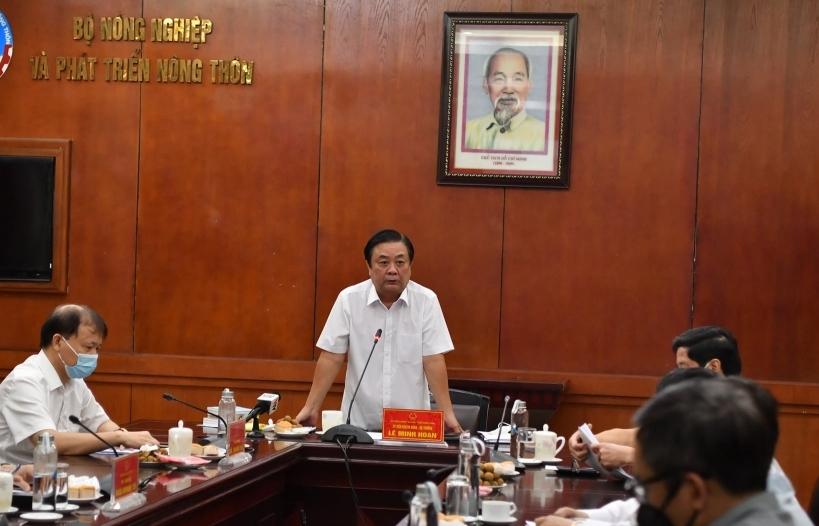 Khách quốc tế có nhu cầu nhập gạo, doanh nghiệp Việt lại không thể giao hàng