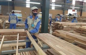 Mỹ điều tra xuất xứ, gỗ Việt cuống cuồng lo loạt thị trường khởi xướng