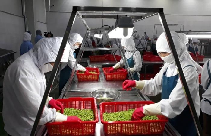 Đến 2030, sản phẩm công nghệ cao đạt 60% tổng giá trị xuất khẩu
