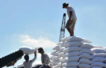Đấu giá nhập khẩu 98.000 tấn đường với giá khởi điểm 2.450.000 đồng/tấn