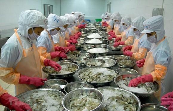 Trung Quốc siết chặt kiểm tra quá cảnh thực phẩm đông lạnh nhập khẩu
