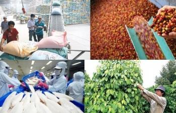 Khó khăn bủa vây, xuất khẩu nông sản đặt mục tiêu 42 tỷ USD