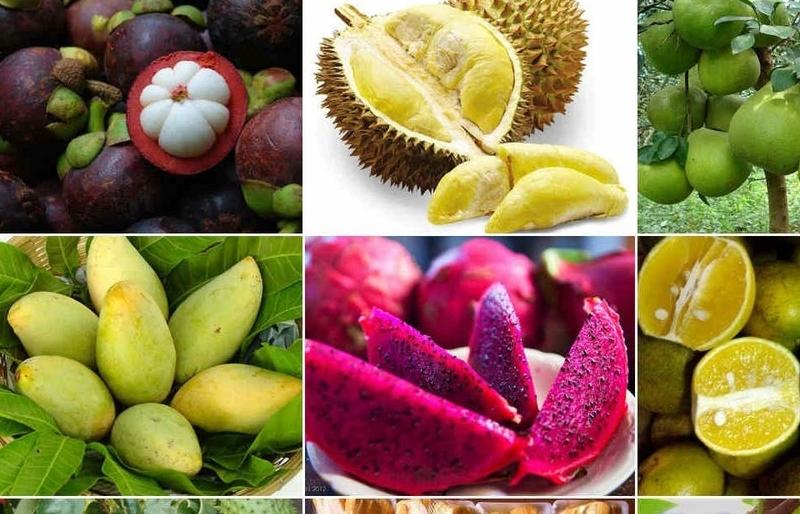 Khuyến cáo thực hiện nghiêm quy định vệ sinh an toàn thực phẩm của Hàn Quốc