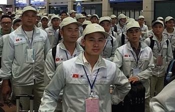 40 quận, huyện bị tạm dừng tuyển lao động xuất khẩu sang Hàn Quốc năm 2019