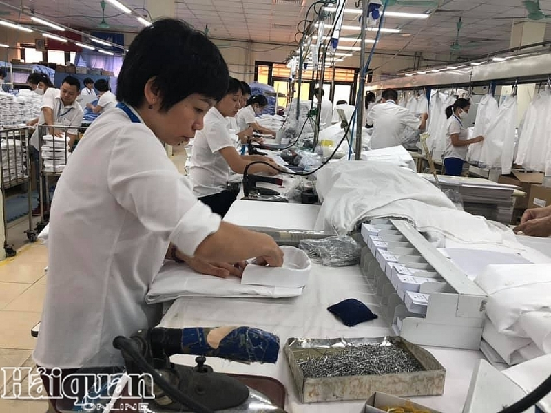 EVFTA: Cơ hội và thách thức nào cho nguồn nhân lực Việt Nam