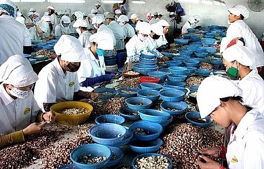 Bộ luật Lao động mới của Việt Nam giúp người lao động hưởng lợi công bằng