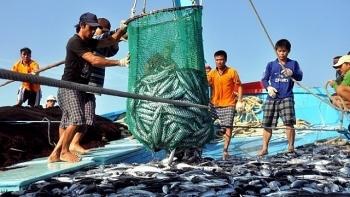 Năm 2020, ngành thủy sản tiếp tục đối mặt nhiều thách thức