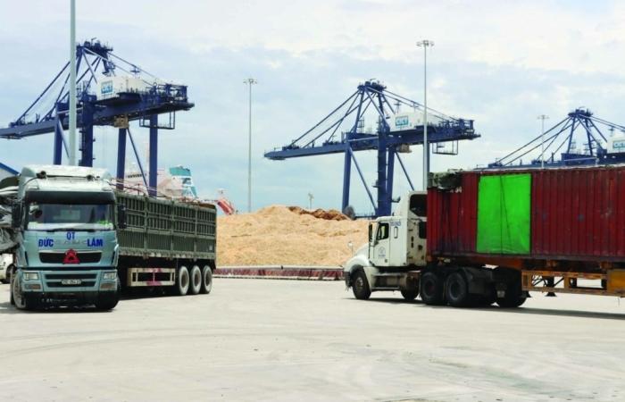 Hải quan Vũng Áng:  Cùng doanh nghiệp xuất khẩu dăm gỗ nối lại thị trường
