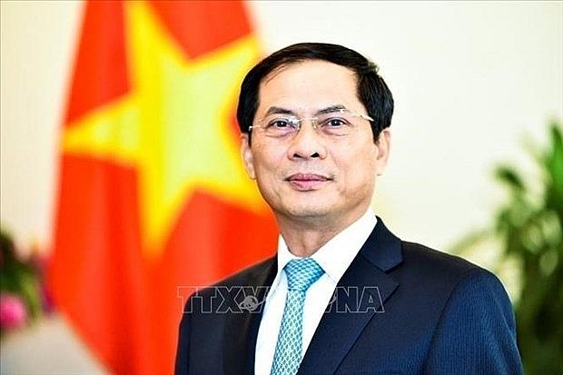 Bộ trưởng Ngoại giao trả lời phỏng vấn về chuyến đi của Chủ tịch nước | Chính trị | Vietnam+ (VietnamPlus)
