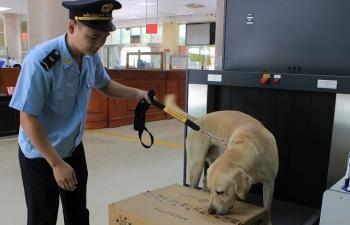4 công chức huấn luyện chó nghiệp vụ được Tổng cục trưởng tặng Giấy khen
