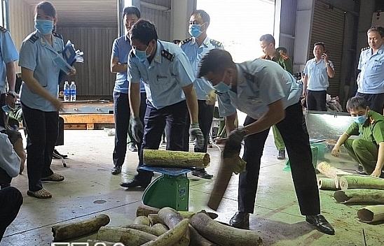 tong cuc truong tang giay khen cho 5 cong chuc hai quan da nang