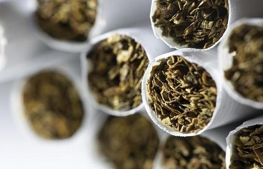 Hải quan Bỉ bắt giữ lượng lớn thuốc lá lậu