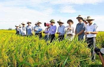 Dự kiến mức chikinh phí sự nghiệp thực hiện hoạt động khuyến nông