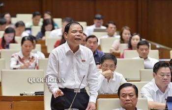 Bộ trưởng Bộ Nông nghiệp: 94% đàn lợn vẫn sạch và không bị dịch tả lợn