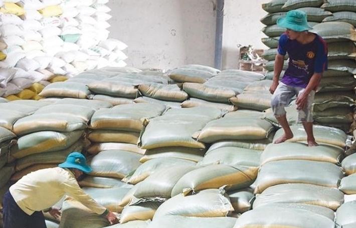 Giá gạo Việt Nam, Ấn Độ, Thái Lan đồng loạt giảm