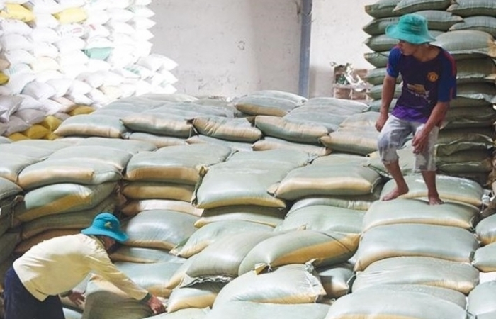 Philippines, châu Phi liên tục  ký hợp đồng, lạc quan xuất khẩu gạo 2021