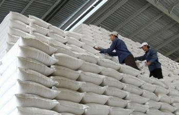 Đã xuất cấp 105,7 nghìn tấn gạo dự trữ quốc gia để cứu trợ, hỗ trợ các tỉnh