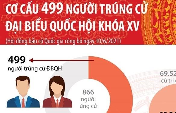 Infographics: Cơ cấu 499 người trúng cử đại biểu Quốc hội khóa XV