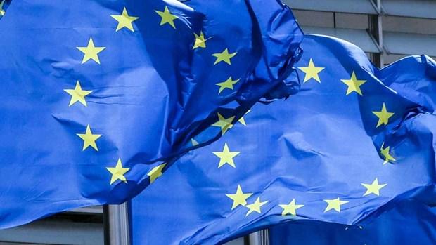 EU muon thuc day quan he voi khu vuc An Do Duong-Thai Binh Duong hinh anh 1